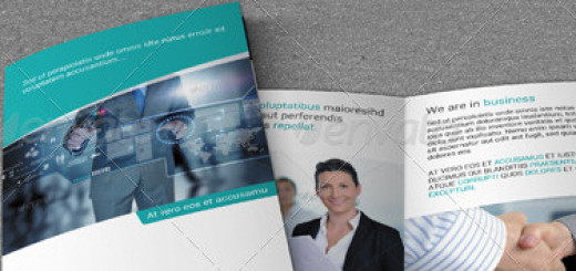 Business Brochure Bundle