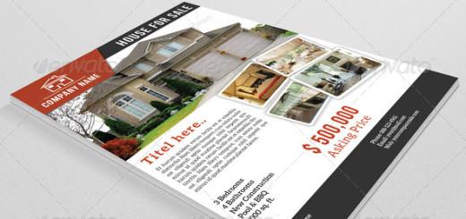 Real Estate Flyer-V08