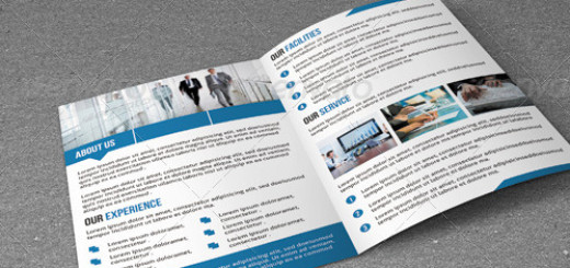 Bifold Business Brochure-V02