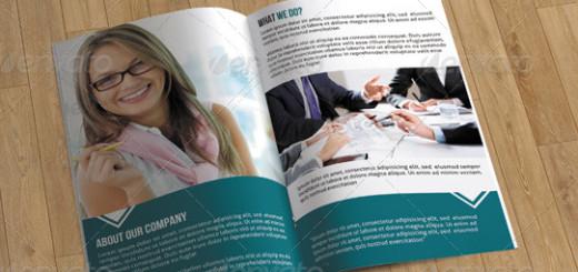 8 Page Business Brochure-V12