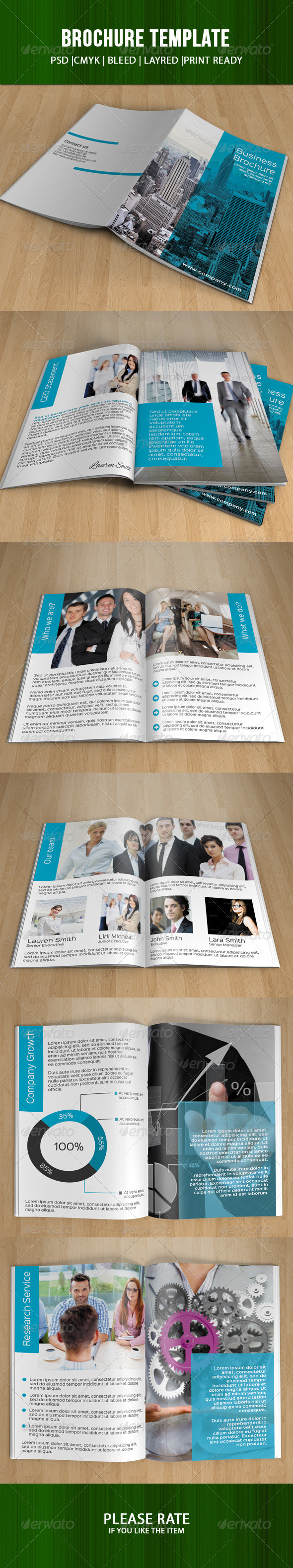 Bifold Business Brochure-V46