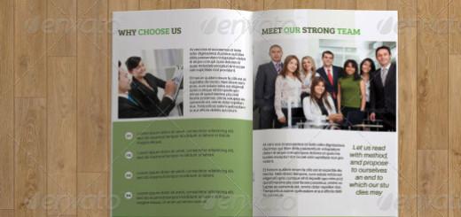 Business Brochure Template-V82