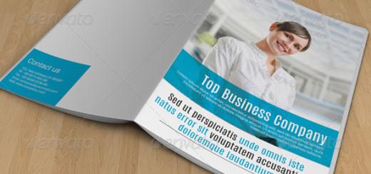 Multi-Business-Brochure