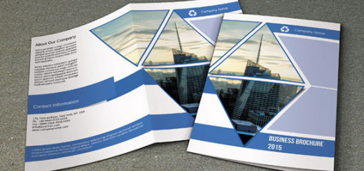 Business-Brochure-Bifold