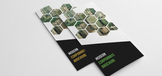 Modern Corporate Brochure-V146