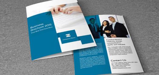 Bifold Business Brochure-V152
