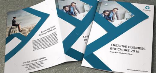 Corporate Bifold Brochure-V299